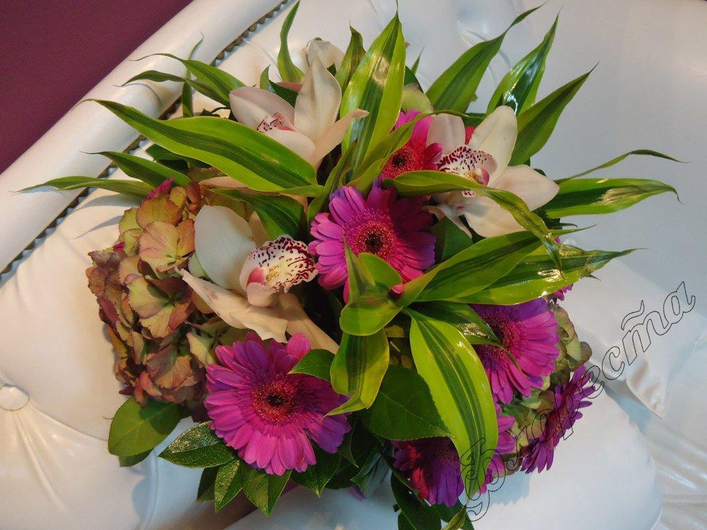 Прекрасный домашний цветок Амариллис